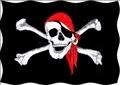 Screenshot_2020-04-20 vlajka pirátská 90 x150 cm Dekorace.png
